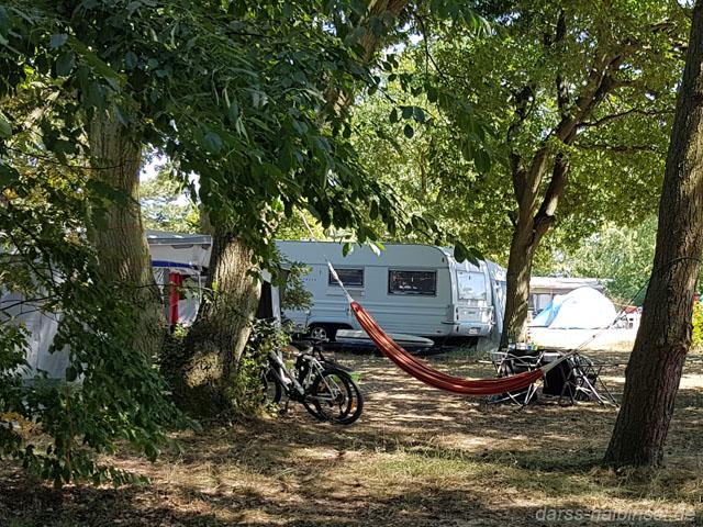 Camping in Born