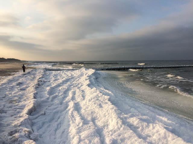 Winter auf dem Darß