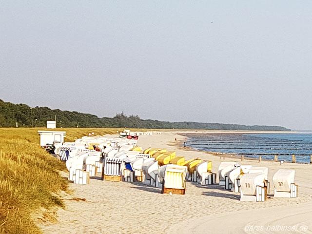 Strand mit Strandkörben Zingst